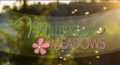 Millbrook_meadows_logo